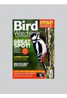 Bird watching**