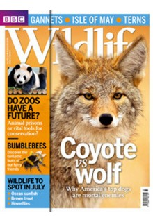 BBC Wildlife magazine**